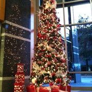 Christmas Tree, Holiday Office Decor